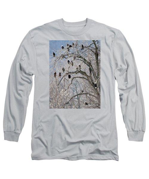 Starved Rock Eagles Long Sleeve T-Shirt by Paula Guttilla