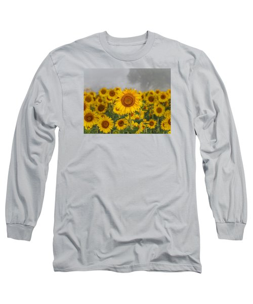 Sunflower In The Fog Long Sleeve T-Shirt