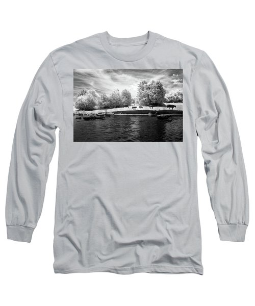 Swimming With Cows Long Sleeve T-Shirt by Paul Seymour
