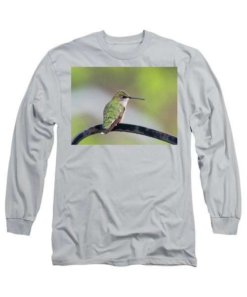 Taking A Rest Long Sleeve T-Shirt