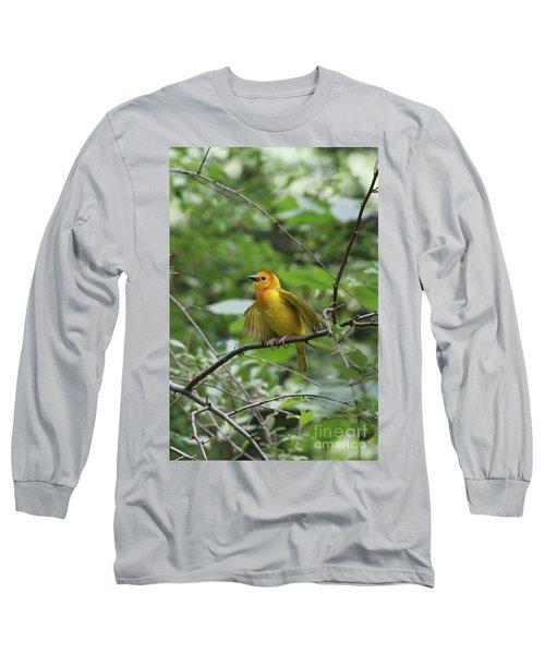 Taveta Golden Weaver #3 Long Sleeve T-Shirt