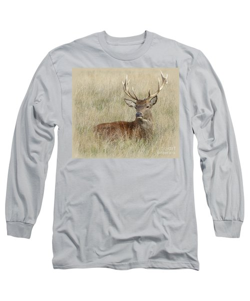 The Gentle Stag Long Sleeve T-Shirt by LemonArt Photography