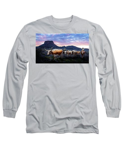 Texas Longhorns Blue Long Sleeve T-Shirt