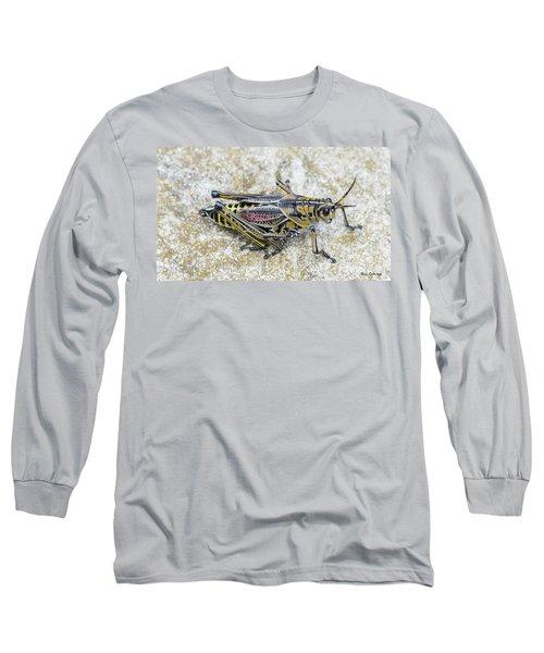The Hopper Grasshopper Art Long Sleeve T-Shirt