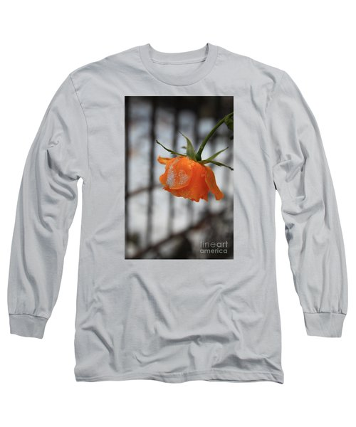 Long Sleeve T-Shirt featuring the photograph The Last Rose Of Summer by Jeanette French