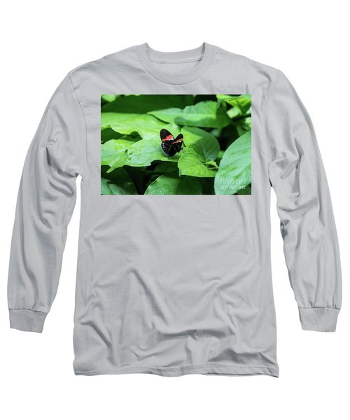 The Leaf Is My Plate Long Sleeve T-Shirt