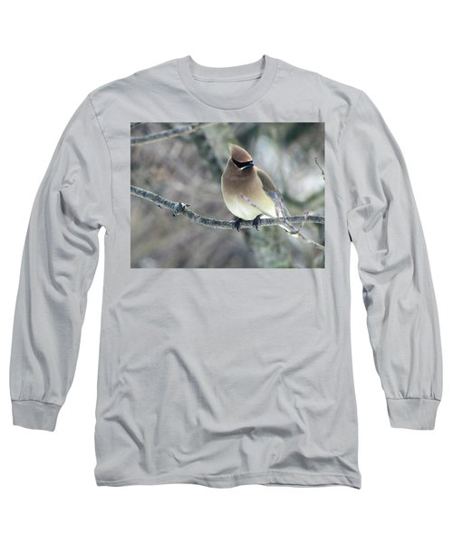 The Masked Cedar Waxwing Long Sleeve T-Shirt