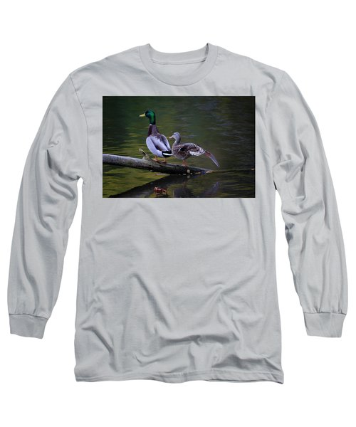 The Seventh Inning Stretch Long Sleeve T-Shirt by Gary Hall