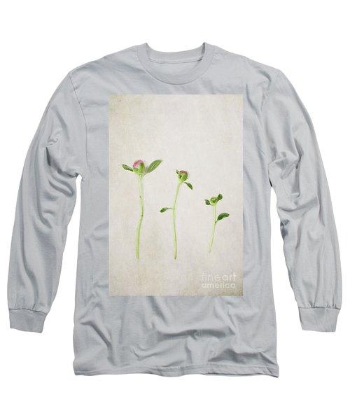 Three Buds Long Sleeve T-Shirt by Stephanie Frey