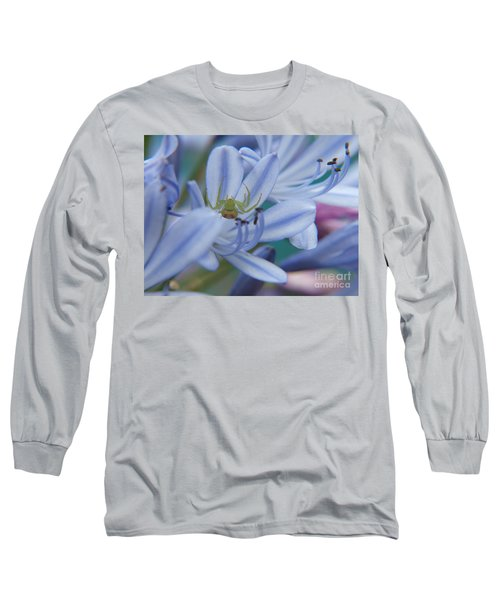 Long Sleeve T-Shirt featuring the photograph Tiny Spider by Trena Mara