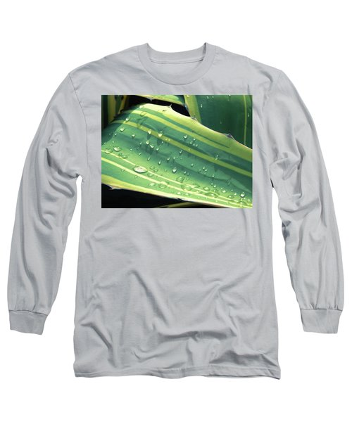 Toboggan Long Sleeve T-Shirt by Beto Machado