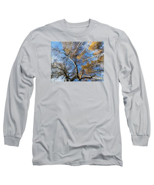 Trees Grow To The Sky Long Sleeve T-Shirt by Odon Czintos