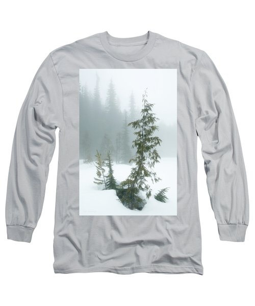 Trees In Fog Long Sleeve T-Shirt