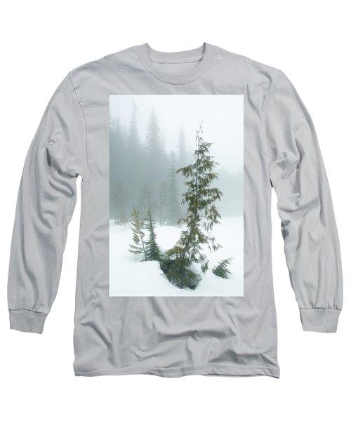 Trees In Fog Long Sleeve T-Shirt