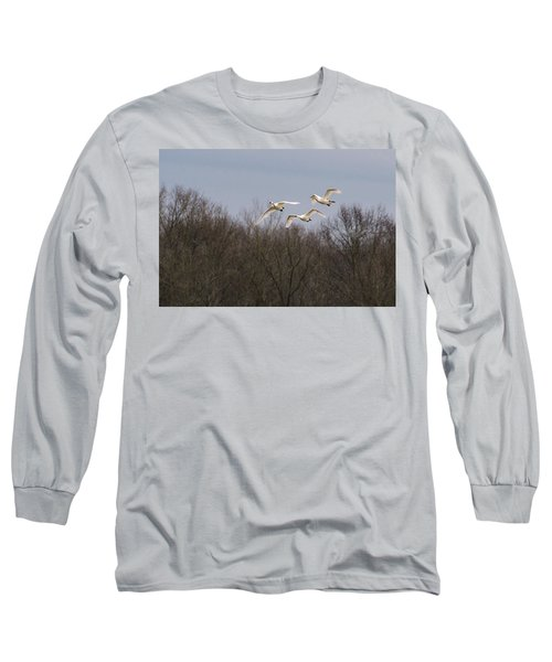 Tundra Swan Trio Long Sleeve T-Shirt