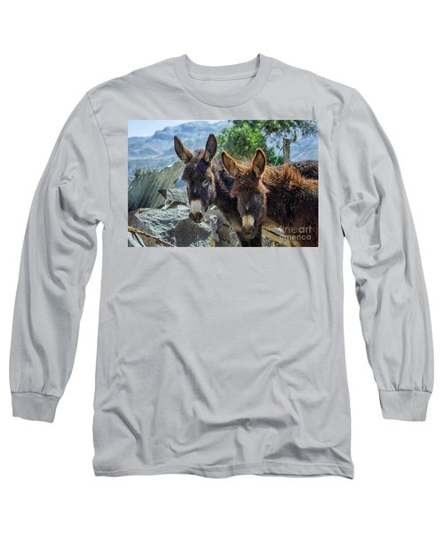 Two Donkeys Long Sleeve T-Shirt by Patricia Hofmeester