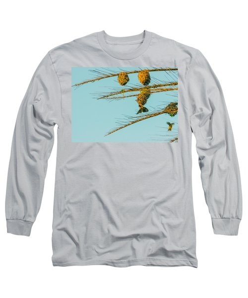 Weaver Birds Long Sleeve T-Shirt by Patrick Kain