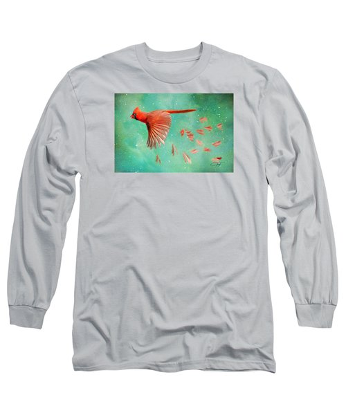 When Feathers Fly Long Sleeve T-Shirt by Colleen Taylor