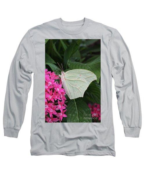 White Angled Sulphur #3 Long Sleeve T-Shirt
