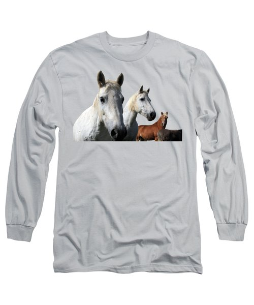 White Camargue Horses Long Sleeve T-Shirt