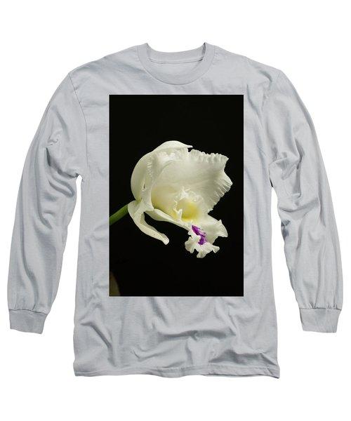 White Cattleya Orchid  Long Sleeve T-Shirt
