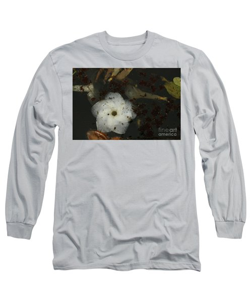 White Hawaiian Flower In The Pond Long Sleeve T-Shirt