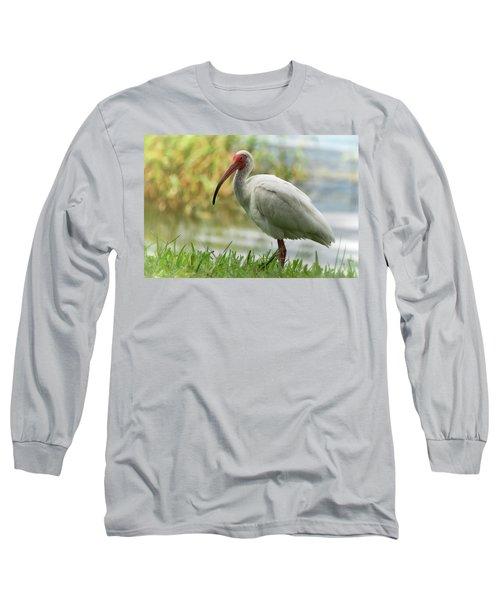 White Ibis On The Florida Shore  Long Sleeve T-Shirt by Saija Lehtonen