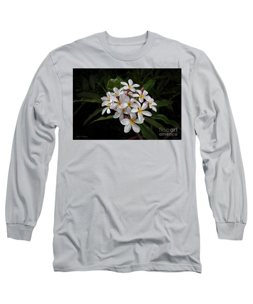 White Plumerias In Bloom Long Sleeve T-Shirt