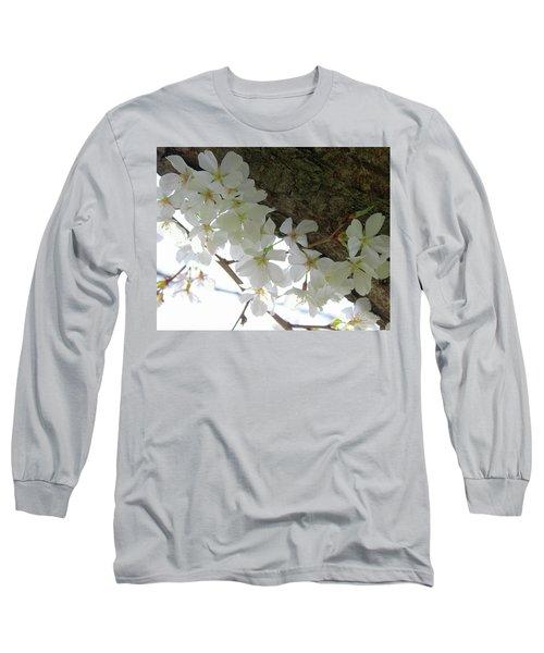 Dogwood Branch Long Sleeve T-Shirt