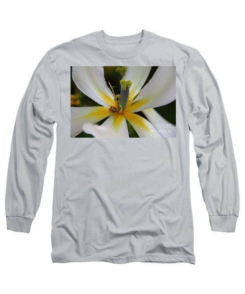 Long Sleeve T-Shirt featuring the photograph White Tulip by Jolanta Anna Karolska