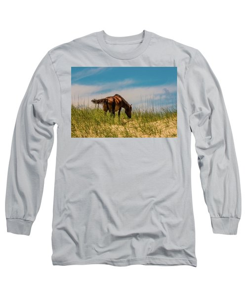 Wild Horse And Dragon Flies Long Sleeve T-Shirt