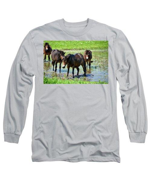 Wild Horses 4 Long Sleeve T-Shirt