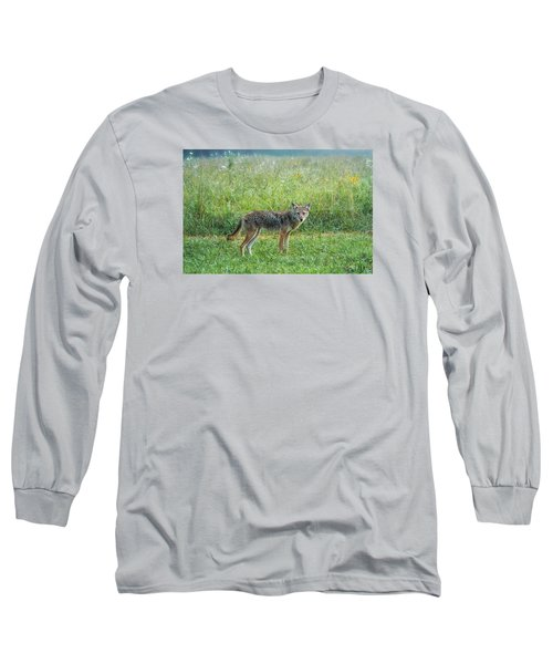 Long Sleeve T-Shirt featuring the photograph Wiley by Jessica Brawley