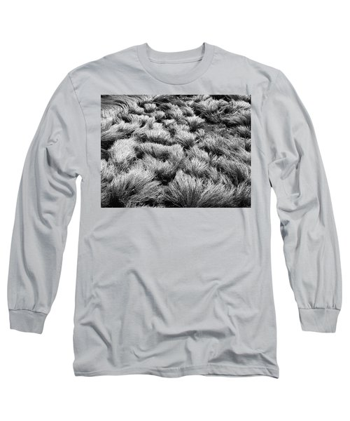 Windblown Grass Long Sleeve T-Shirt