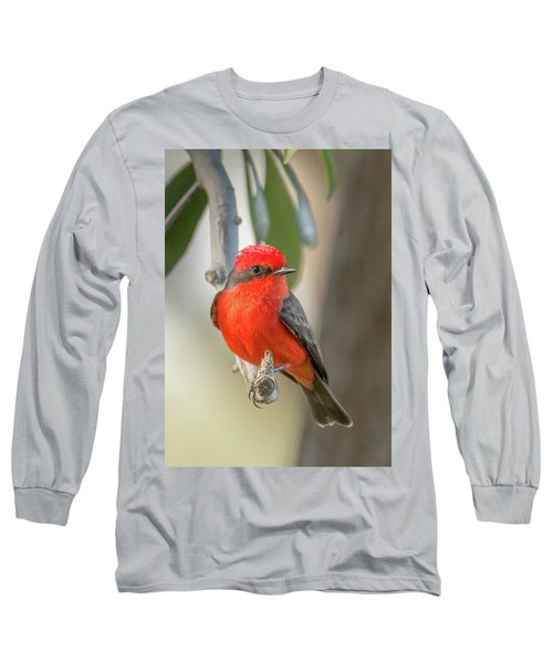 Winged Zorro Long Sleeve T-Shirt