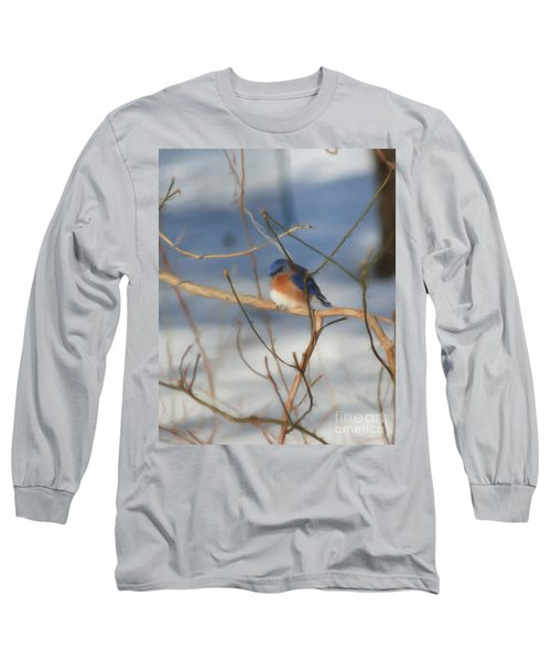Long Sleeve T-Shirt featuring the painting Winter Bluebird Art by Smilin Eyes  Treasures