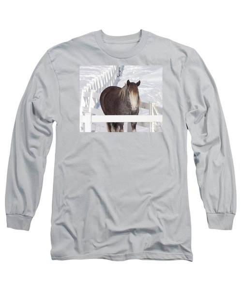 Winter Horse Long Sleeve T-Shirt by Debbie Stahre