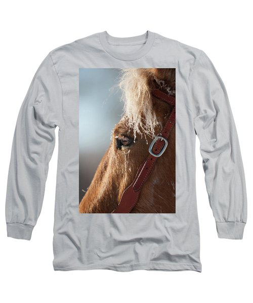 Winter Mustang Eye Long Sleeve T-Shirt