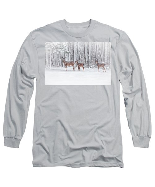 Winter Visits Long Sleeve T-Shirt by Karol Livote