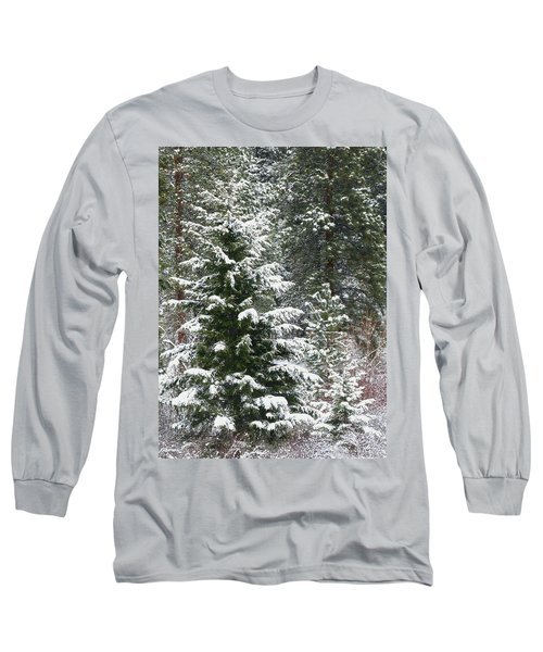 Long Sleeve T-Shirt featuring the photograph Winter Woodland by Will Borden