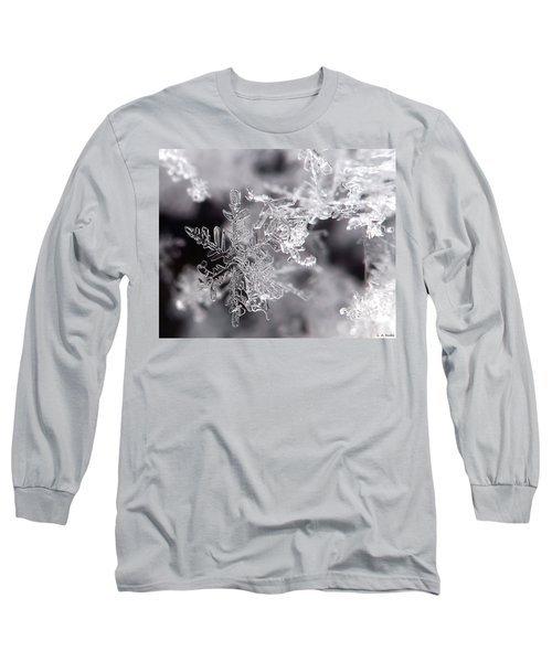 Winter's Beauty Long Sleeve T-Shirt