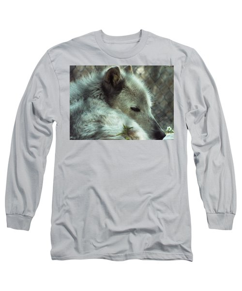 Wolf At Rest Long Sleeve T-Shirt