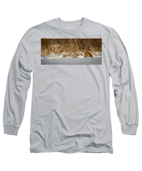 Yampa Glare  Long Sleeve T-Shirt