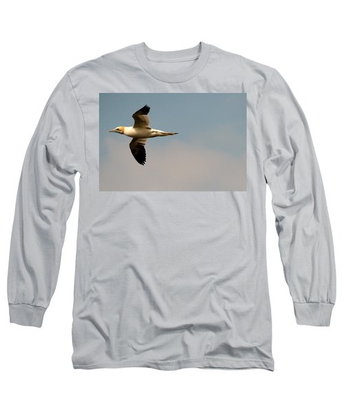 Yellow Headed Gull In Flight Long Sleeve T-Shirt