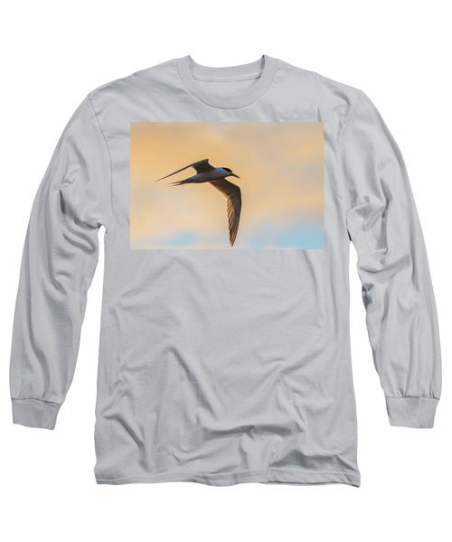 Crested Tern In The Early Morning Light Long Sleeve T-Shirt