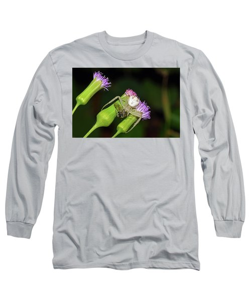 Crab Spider With Bee Long Sleeve T-Shirt