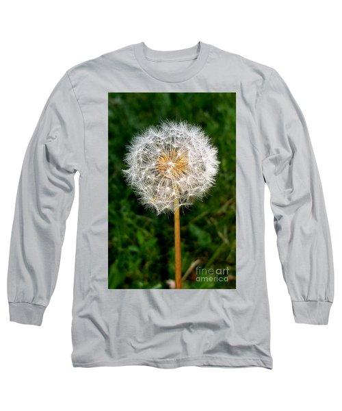 Dandelion 1 Long Sleeve T-Shirt