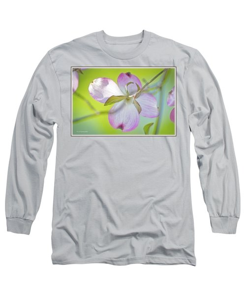 Dogwood Blossom In Spring Long Sleeve T-Shirt