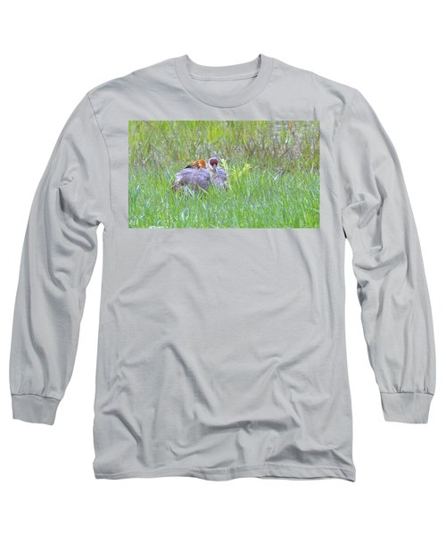 Double Down  Long Sleeve T-Shirt