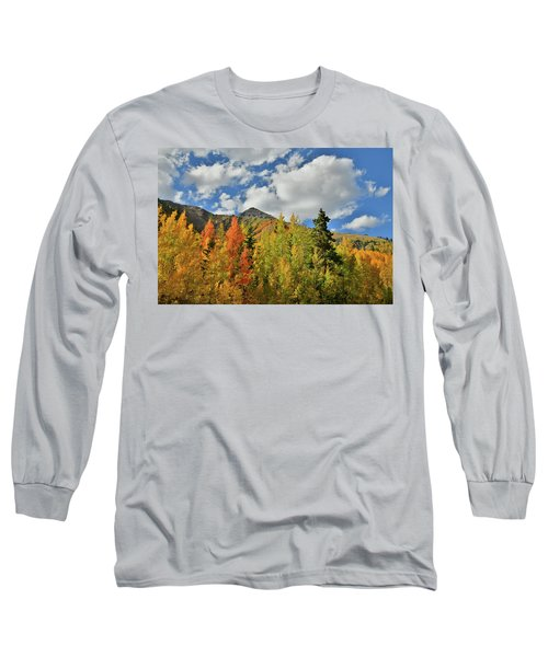 Fall Colored Aspens Bask In Sun At Red Mountain Pass Long Sleeve T-Shirt